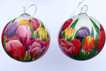 Colored tulip white background